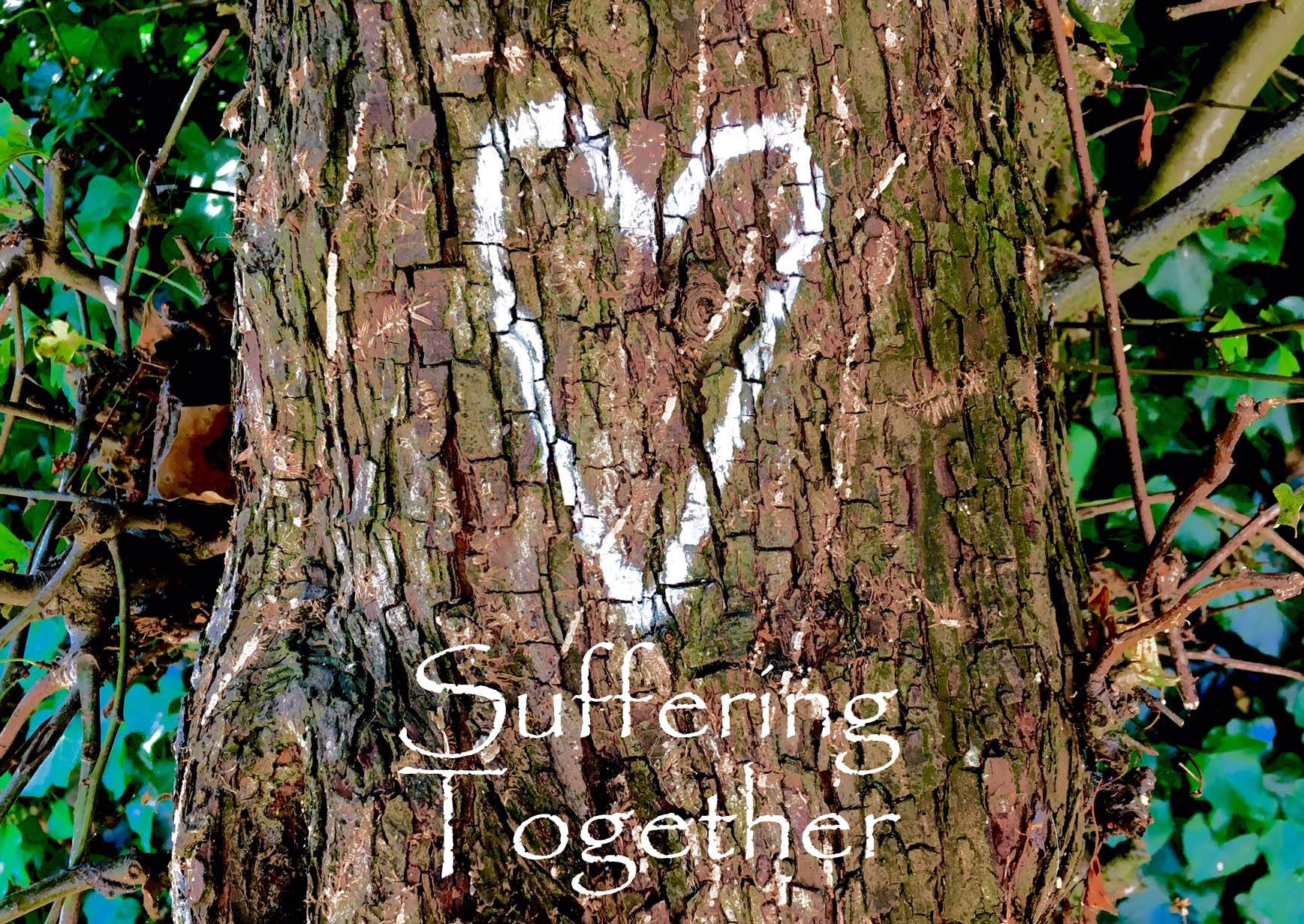 Suffering together copy