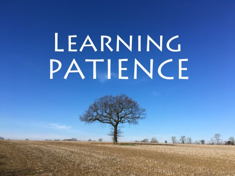 Blog learning patience_edited-1